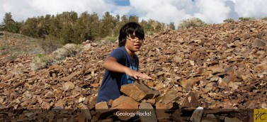 logy Rocks! (banner)