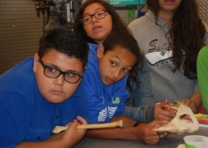 At the Orthopaedic Research Lab at UCSF, DaVinci Camp scholars learn about bones.