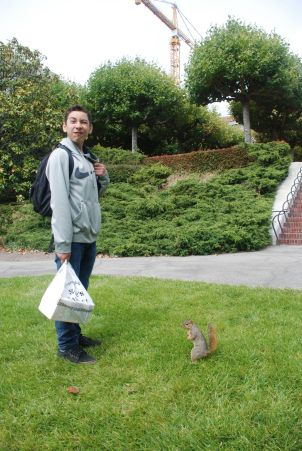 One of the infamous Berkeley squirrels approves of DaVinci Camp.