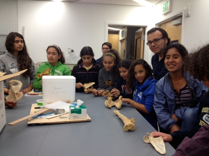 At the UCSF orthopedic surgery lab, Dezba Coughlin, director of the lab, showed the students a few bones.