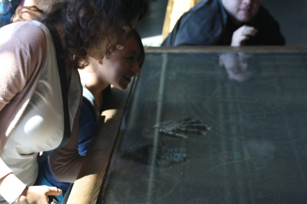 Scholars place their hands under the large pin toy and the images of their hands are formed.