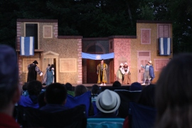 DaVinci Camp gets the chance to attend a rendering of The Taming of the Shrew in Pleasanton's Amador Valley Community Park.