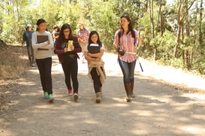 These scholars listen to Geologist Aurora Smedley while they hike the Berkeley fire trails in search of rock formations.