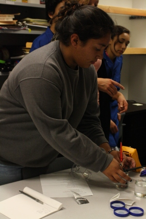 This scholar tests the conductivity of deinoized water.