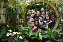 Scholars really enjoyed visiting the botanical gardens at Golden Gate Park in San Francisco.